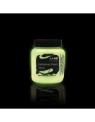Peinture Phosphorescente 'Glow in The Dark'